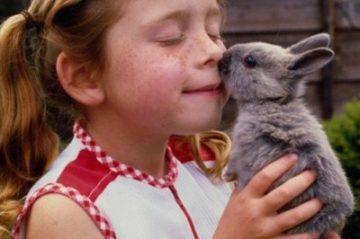 Аллергия на мясо кролика у ребенка