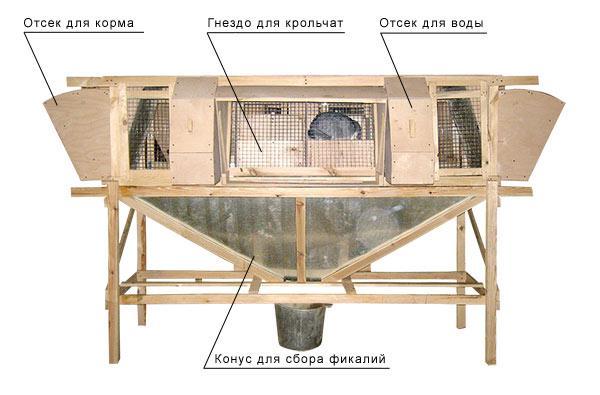 Клетка для кроликов михайлова своими руками чертеж 90