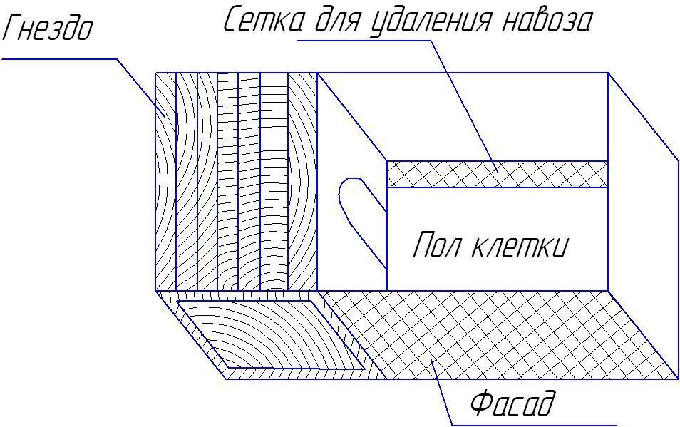 Разбираем подробно чертеж клеток Золотухина
